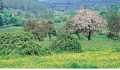 Защита пейзажей, ежедневный труд