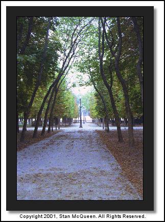 Тюильри (Tuileries)